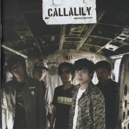 Callalily1