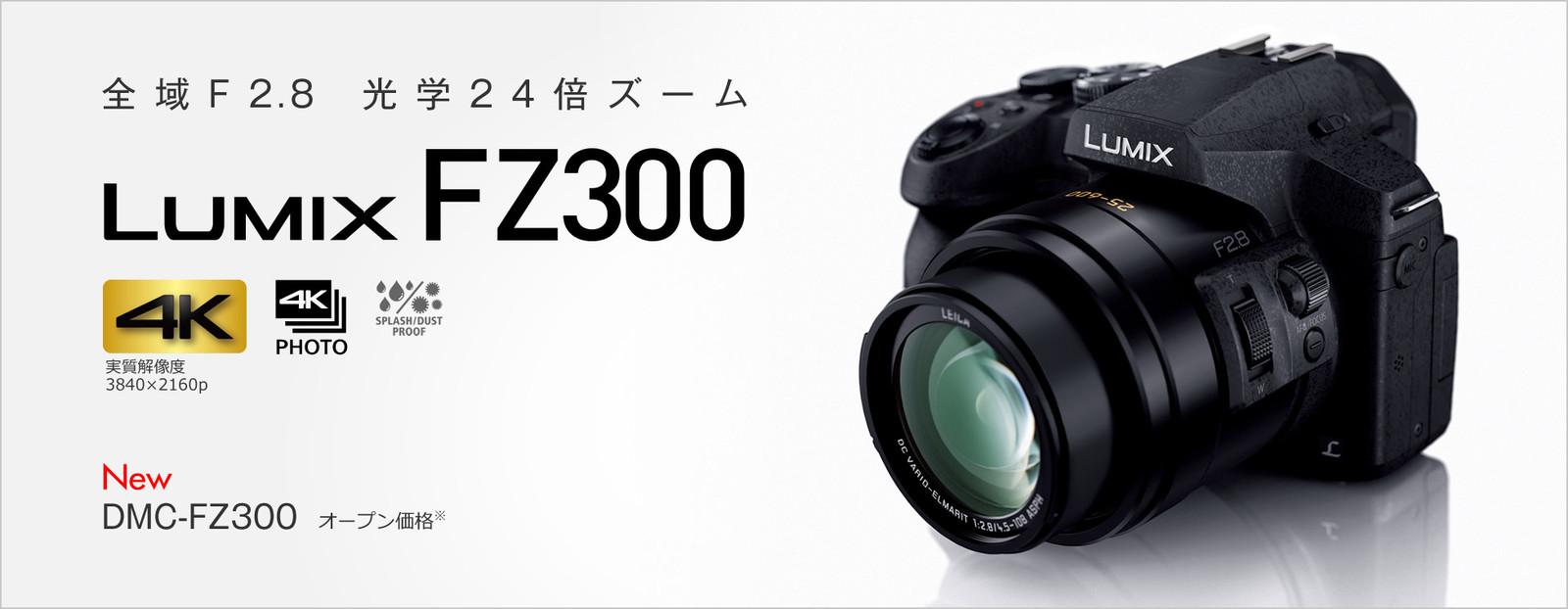 Fz300_2